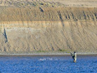 Biggest Sea-Run Brown trouts in the world | Rio Grande | Argentina