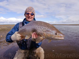 Giant Sea Run Brown Trout