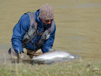 Release | Rio Grande Fly fishing in Argentina