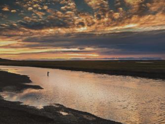 Sea-Run Brown | Rio Grande | Argentina