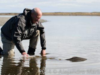 Release - Tierra del Fuego